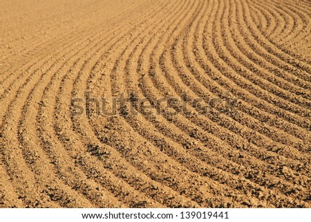 Field structure - stock photo