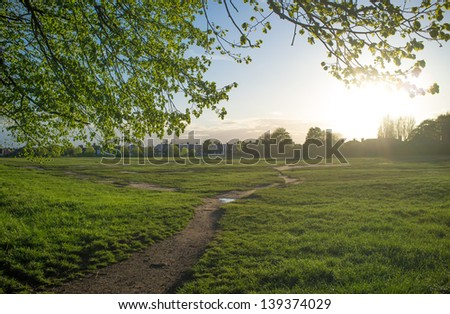 Field sunset - stock photo