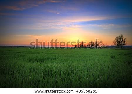 field, sunset, farm, land, outdoor, hill, sunlight, sunbeam, meadow, nobody, natural, scene, beautiful, background, nature, idyllic, environment, landscape - stock photo