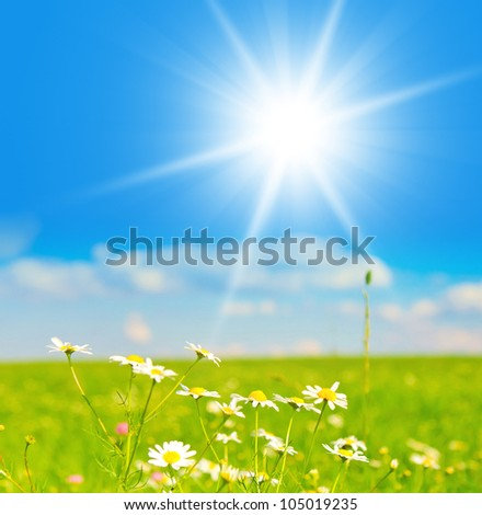 Field under the Sky Farm Area - stock photo