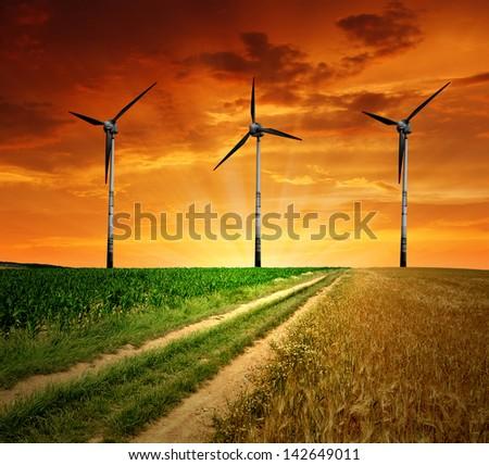 Field way with wind turbines - stock photo
