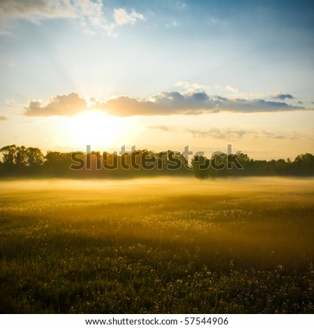 Field with fog at sunset - stock photo