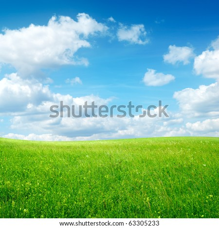 field with green grass and clouds on blue sky - stock photo