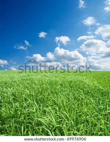 field with green grass under deep blue sky with clouds - stock photo