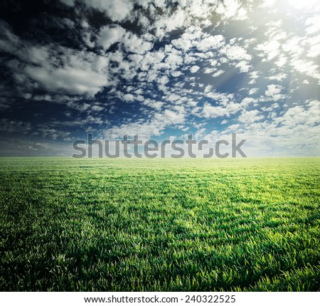 Field with green lush grass under cloudy sky - stock photo