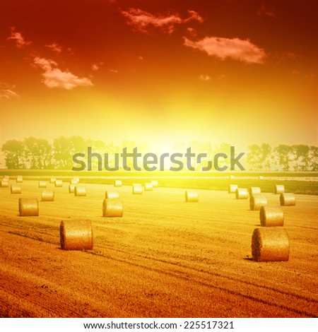 Field with hay bales and dramatic sunset.  - stock photo