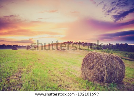 Field with hay bales at twilight. vintage photo - stock photo