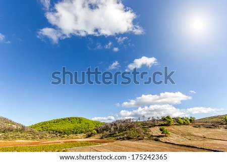 field with hills and trees on a sunny day