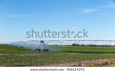 Field with irrigation system - stock photo
