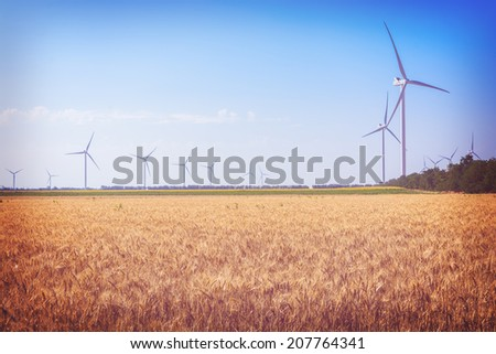 Field with wheat and eco power, wind turbines -  toning in instagram style