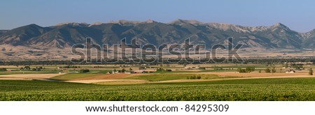 Fields and farms of the Gallatin Valley in summer, Gallatin County, Montana, USA
