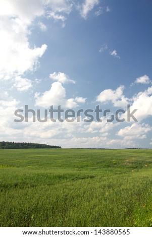 fields and meadows in the summer in central Europe - stock photo