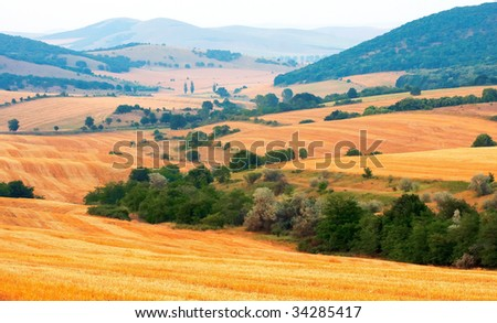 Fields from above - stock photo