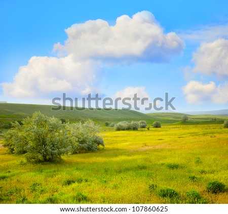 fields in Crimea - stock photo