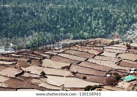 fields in high Nepalis Himalaya - stock photo