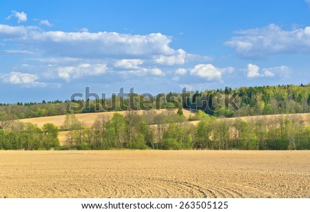 Fields in spring. Moscow region, Russia - stock photo