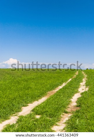 Fields of Sunlight Acres Wild  - stock photo