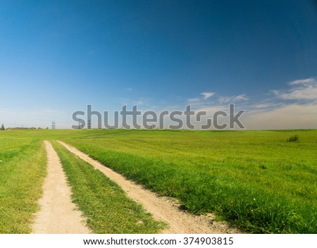 Fields of Sunlight Through the Green  - stock photo