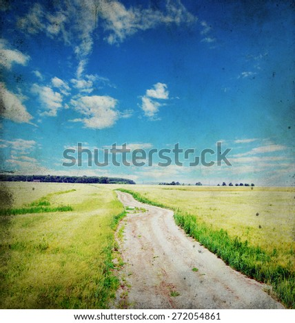 Fields of wheat at the end of summer fully ripe - stock photo