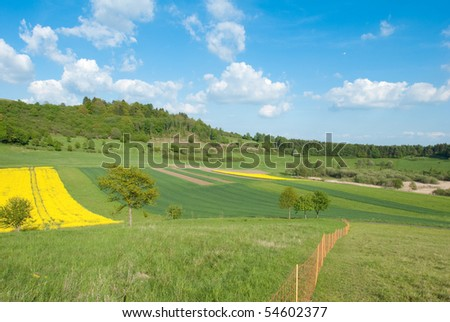 Fields with raps in spring, Germany - stock photo