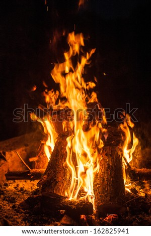 Fiercely burning camp fire flame on black background - stock photo