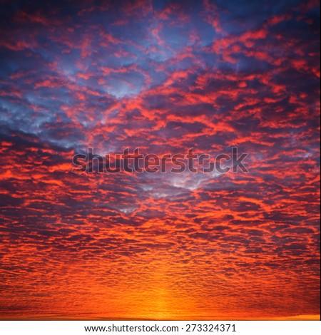 Fiery orange sunset sky. Beautiful sky. - stock photo