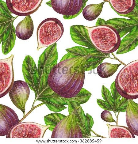 Fig pattern - stock photo