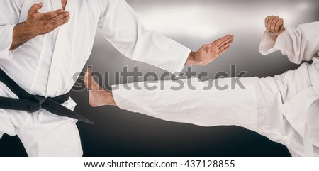 Fighter performing karate stance against spotlight - stock photo