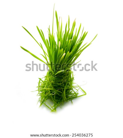 figure green grass isolated - stock photo
