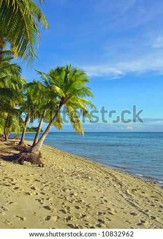 Fijian Beach and Palm Trees - stock photo