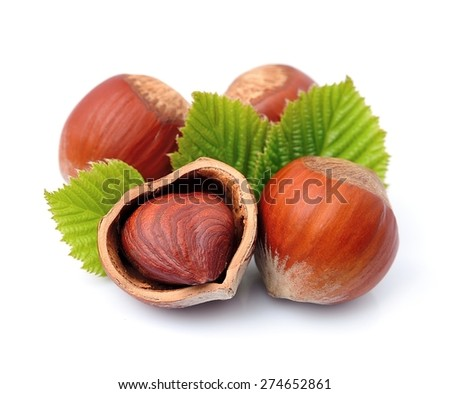 Filbert nuts with leaf on white background . Hazelnuts. - stock photo