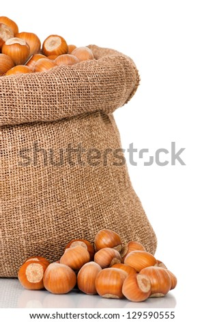 Filberts in burlap sack, isolated on white background - stock photo