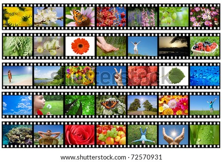 Film strip with different photos - life and nature (my photos) - stock photo