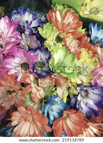 Filtered smart phone image of different colored daisies in a bunch - stock photo