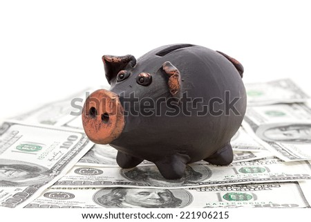 Finance and economy concept. Money and black piggy bank - stock photo