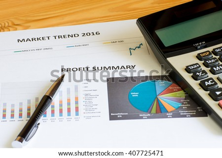 Financial accounting profit summary graphs analysis - stock photo
