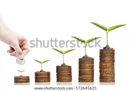 Financial Investment concept,Hand with coin and Seed on golden coin over white background - stock photo