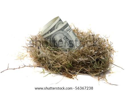 Financial Nest Egg concept $100.00 (one hundred dollar bills)  inside a bird egg inside a bird nest - stock photo