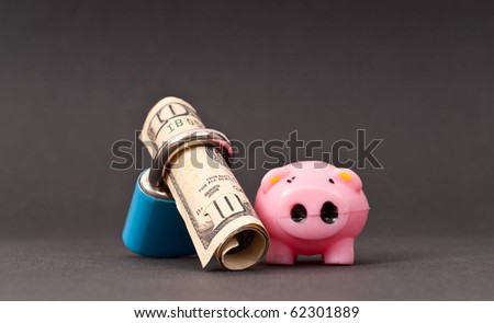 Financial Security Concept with Little Pig and Money in Lock - stock photo