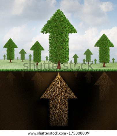 Financial stability and strong growing economy metaphor as a group of trees and roots shaped as arrows pointing up towards success as a business symbol of economic teamwork strength. - stock photo