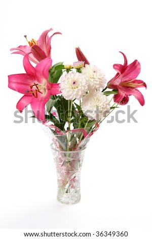 Fine flowers - stock photo