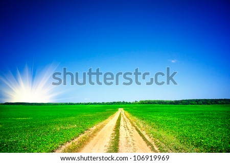 Fine green soybean field and blue sky with clouds. - stock photo