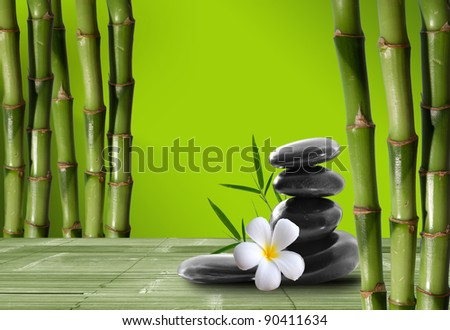 fine image of different bamboo, nature background - stock photo