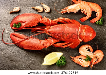 Fine selection of crustacean for dinner. Lobster and shrimps on dark stone plate. Food background - stock photo