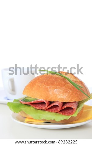 Fine served wheat roll with salami. All on white background.