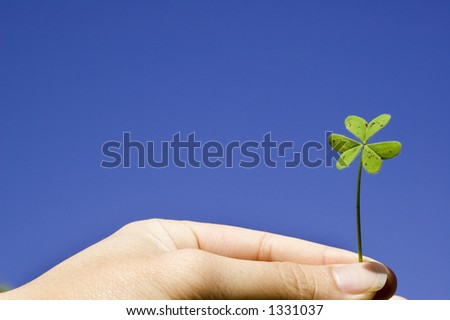 Finger holding a clover in sky background with the concept of lucky,growth,freedom and harmony - stock photo