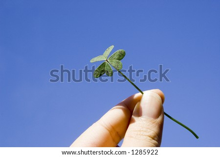 finger holding a clover under the blue sky. concept of lucky, freedom - stock photo