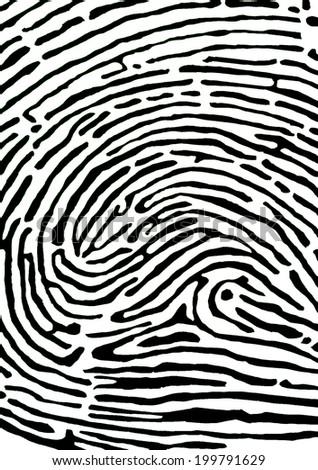 Finger print background - stock photo