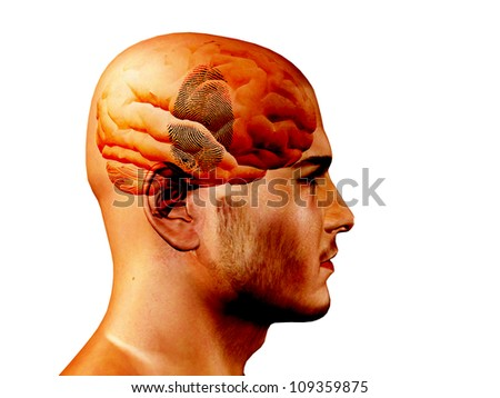 Finger Print on brain - stock photo