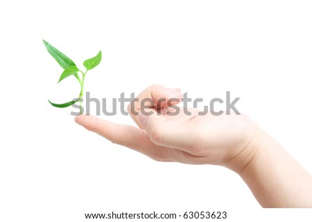 Finger supporting a new plant - stock photo